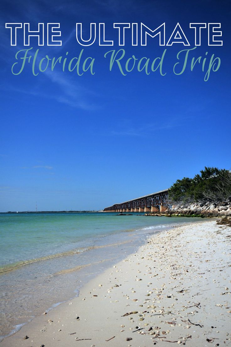 The Ultimate Florida Road Trip | Pinterest | Trips, Spring ...