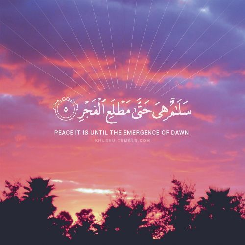 Quotes Of Pictures: 200+ Beautiful Quran Quotes, Verses & Surah (with English