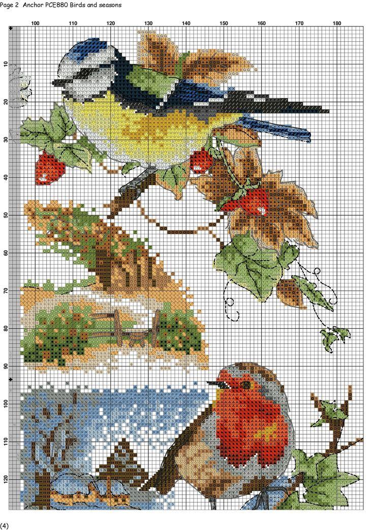 bird saison grille 3/4