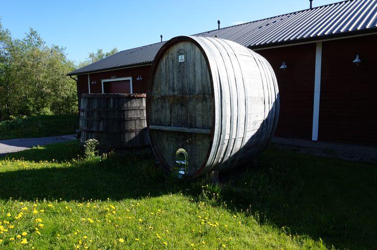 Viini valmistuu Valamossa Lahden Asiakaspalveluosaajien opiskellessa. Kesäkuu 2014