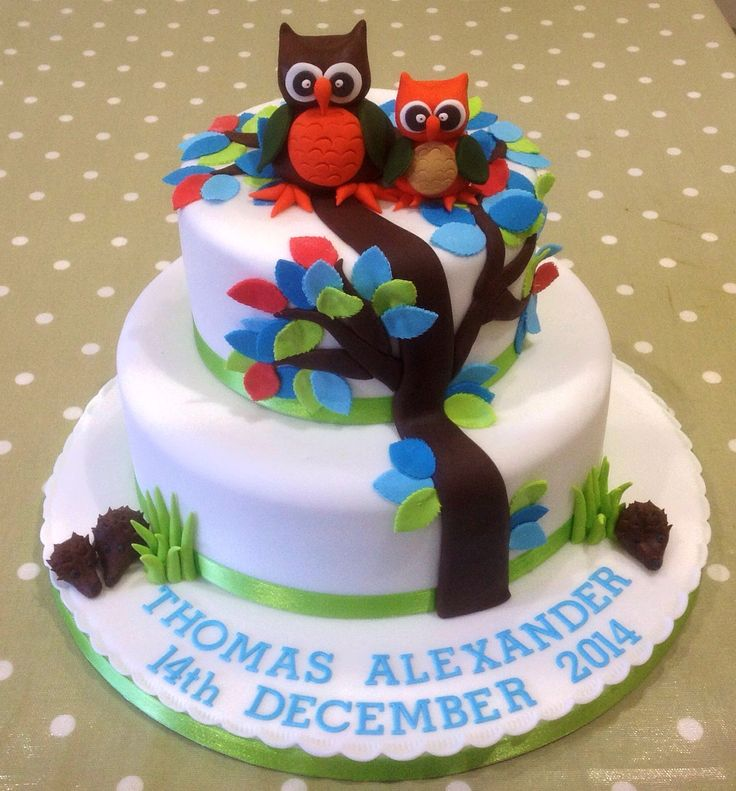 Owls Christening cake
