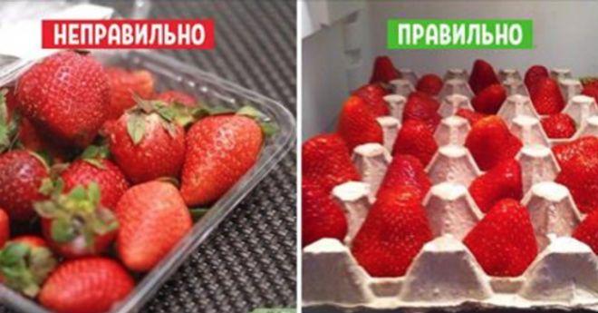 Многие молодые хозяйки, заглядывая в холодильник, каждый раз наталкиваются на грустное зрелище: продукты, которые начинают портиться или уже испортились. Чтобы избежать этой неприятности и не выбрасывать раньше времени овощи и фрукты, следуй нашим простым советам!  Хранение