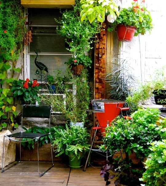 17 best images about garden container garden on pinterest window boxes container gardening - Vertical gardens miniature oases ...