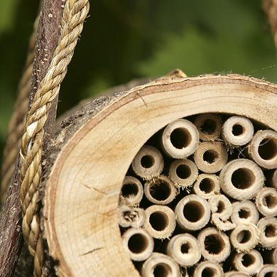 Pollinating bee log - Bees nest. Beautiful and worth considerating - check also their other garden wild-life items out!