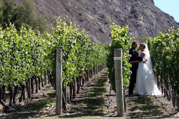 Wine tasting in the vines at Gibbston Valleyhttp://queenstownweddings.org/wedding-directory/group-activities