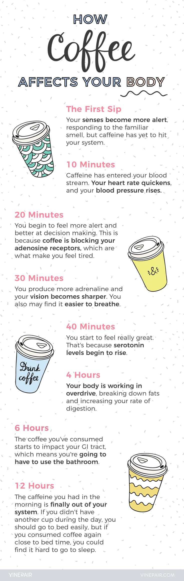 What Happens to Your Body When You Drink Coffee? - FYI - Doesn't' take 6 hours to go through your system..more like 30 - 60 minutes.