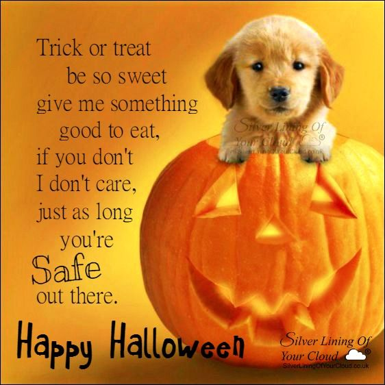 Trick or treat, be so sweet, give me something good to eat, if you don't, I don't care, just as long you're safe out there...Happy Halloween ..._More fantastic quotes on: https://www.facebook.com/SilverLiningOfYourCloud  _Follow my Quote Blog on: http://silverliningofyourcloud.wordpress.com/