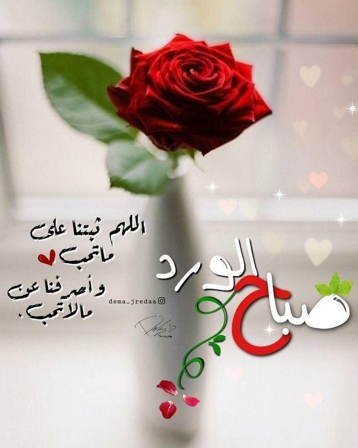 Pin By Ibrahim Iraq On صباح الخير Beautiful Morning Messages Good Morning Flowers Good Morning Photos