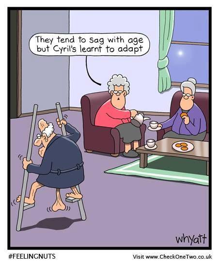 Happy Birthday Funny Comic Jokes: 160 Best Tim Whyatt Images On Pinterest