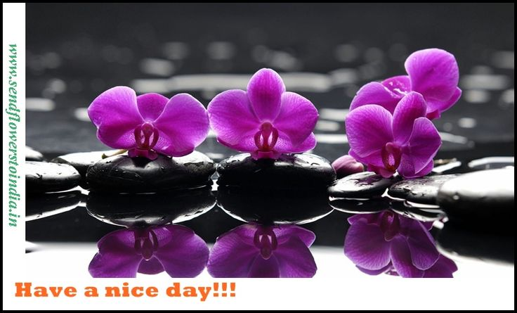 Good day to all!!!!