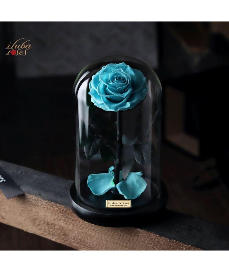 وردة ايلوبا روزز تيفاني داخل فازة زجاجية Home Decor Vase Decor