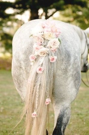 It's a rose wedding horse!