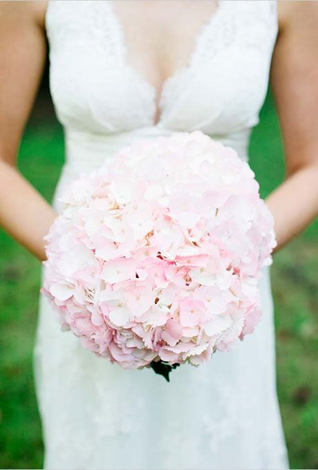 Brides: Pale Pink Hydrangea Bouquet. A classic bouquet comprised of pale pink hydrangeas.