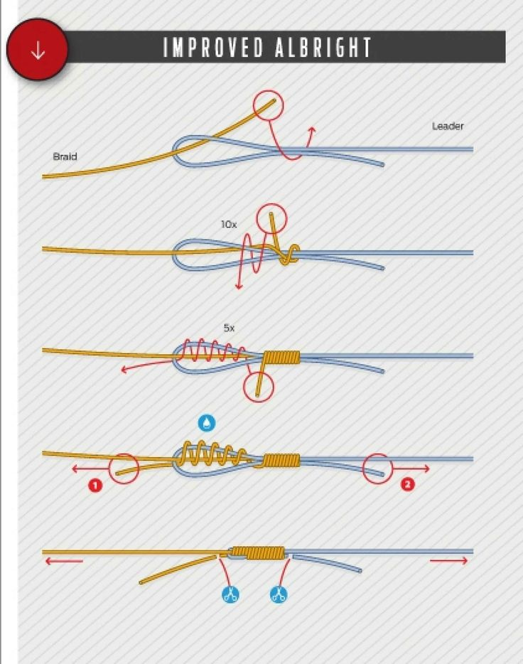 Best 25 best fishing knot ideas on pinterest tying for Easiest fishing knot