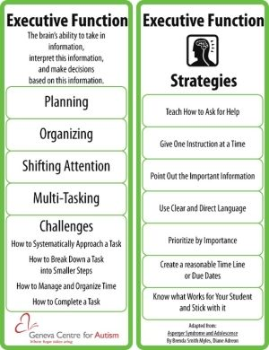 Executive Functioning Skills~ Re-pinned by Total Education Solutions. Check out the rest of our School Resources and Therapy pins @ by stormjem
