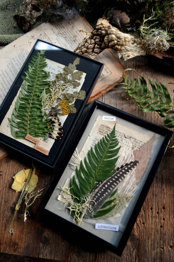 Simple pressed foliage gifts. Got the frames for about 4 bucks and just used old book pages, materials and other trinkets to arrange and fill up space - Pinned by The Mystic's Emporium on Etsy