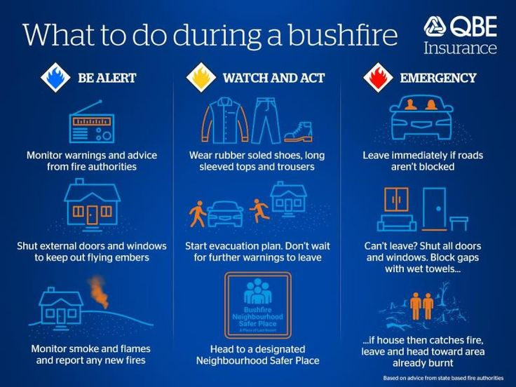 Protecting your family: our guide to staying safe during a bushfire         |         QBE Insurance