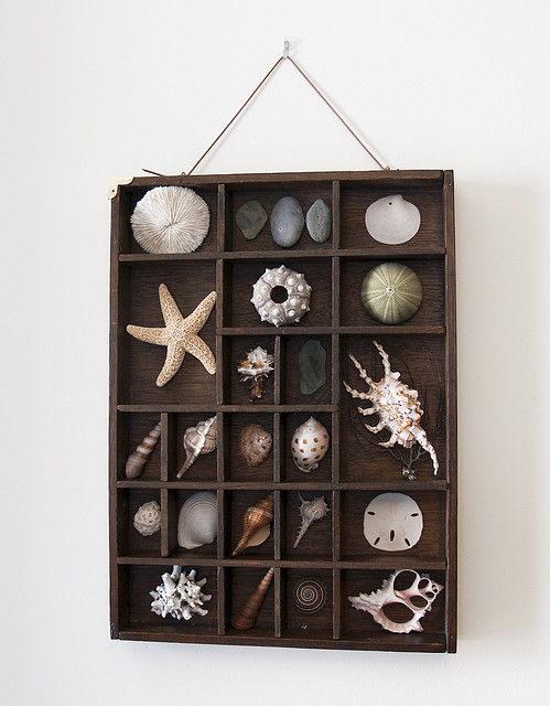 Use the brown thing like this that mom gave me and do this with Navarre shells!