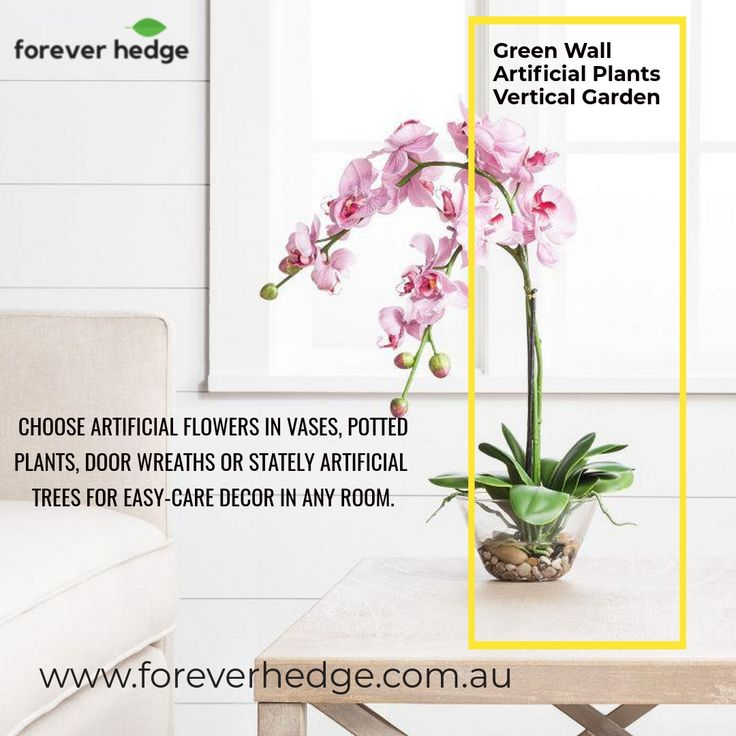 Forever Hedge aims to guide their clients in the right direction. . While cutting out maintenance expenses these plants add life to any space. That's why architects, business owners, project planners and even homeowners, everyone wants to add these plants to their home or office. . Grab the deal now. . #plants #greenliving #plantlife #interior_and_living #landscapedesign #decoration #flowerslovers