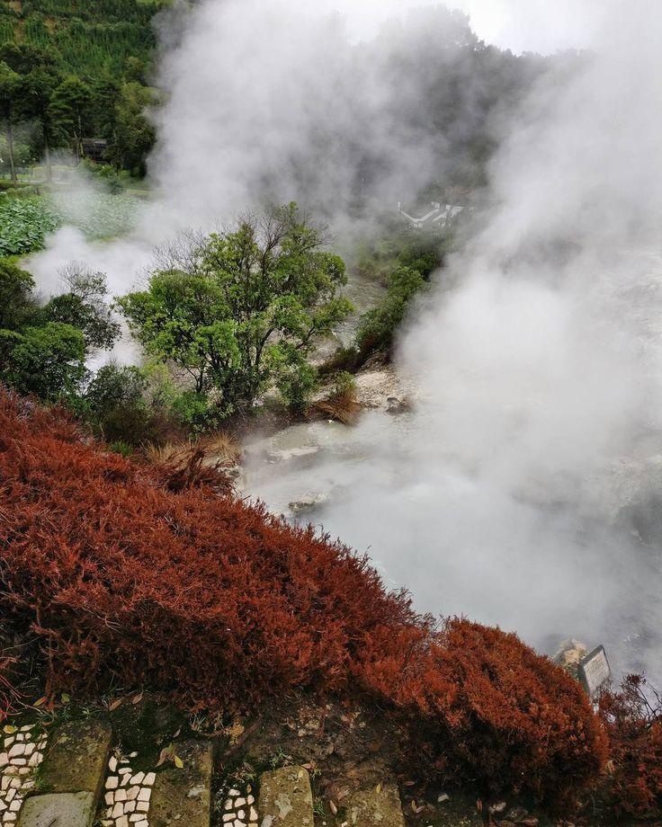 geysers. nature truly knows best. . #natureknowsbest #açores #azores #portugal #atlantic #prostozpodrozy #instatravel #hereandthere #alpakamybags #geyser #furnas #instanature