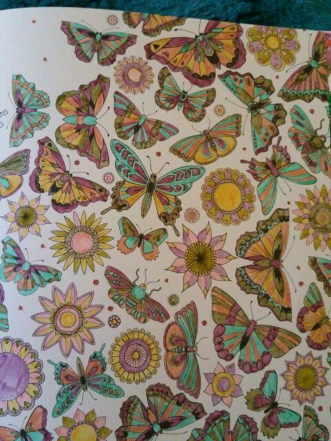Johanna Basford Coloring Book The Secret Garden Coloured By Me