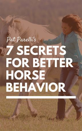 Seven secrets for better horse behavior from Pat Parelli. | Horse training tips