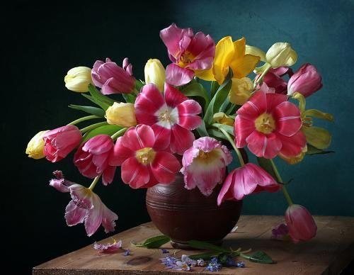 Предвестники весны. Фотограф Марина Филатова
