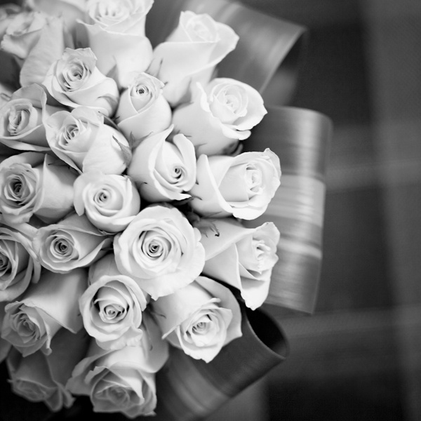 black and white shot of beautiful roses
