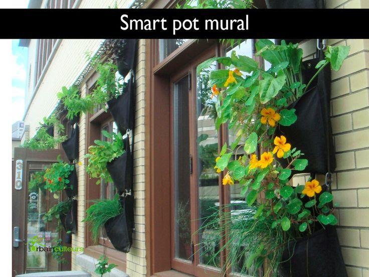 Smart Pot mural