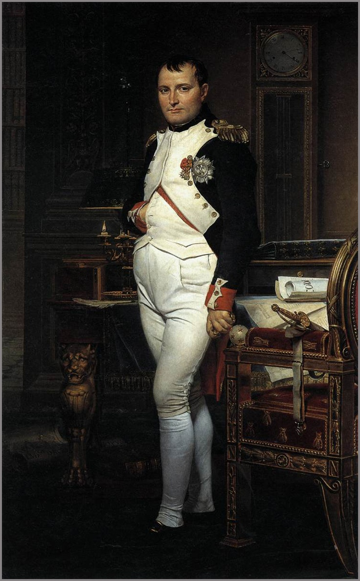 a study of napolean nationalism Chapter 3: the french revolution and napoleon nationalism in the middle east reading essentials and study guide.