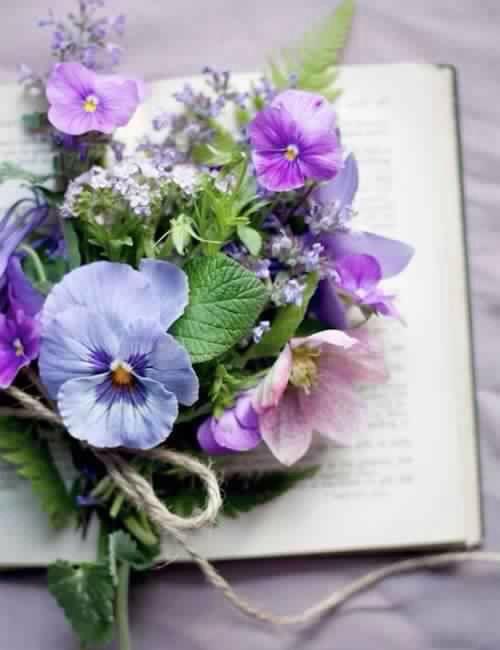 Цветы и книга