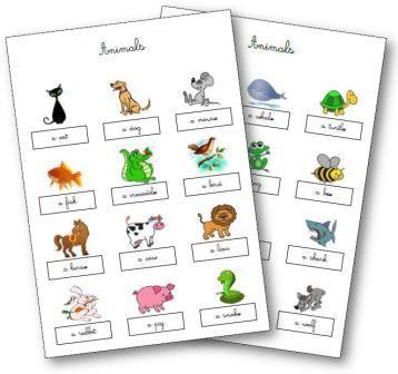 Les animaux en anglais : Matériel pour découvrir les animaux en anglais aux cycles 1, 2 et 3, flashcards, leçons, comptines, dominos, jeu de mémory...