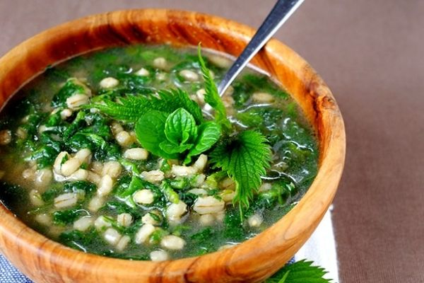 la zuppa d'orzo e ortiche ... Una zuppa primaverile con le ortiche appena spuntate, ottima da gustare anche tiepida con pane bruscato.