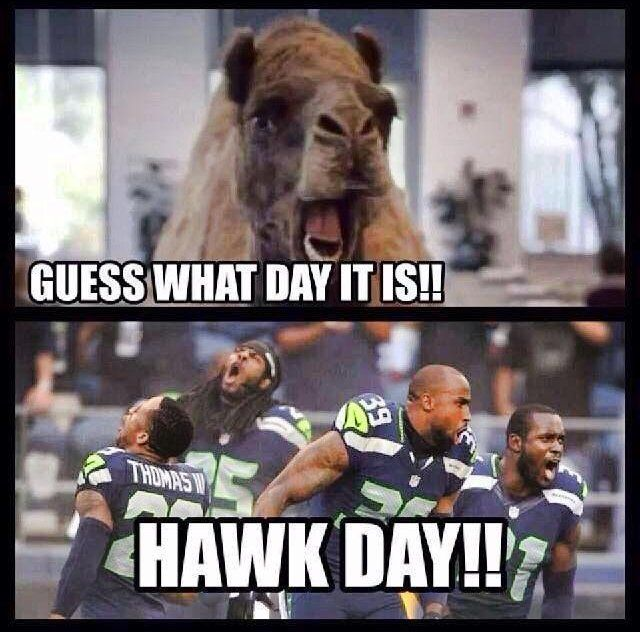Great take on the hump day commercial! Go hawks!