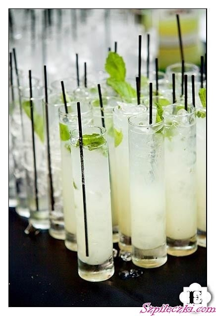 mojitos...summertime and the living's easy :)