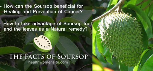 The Facts of Soursop