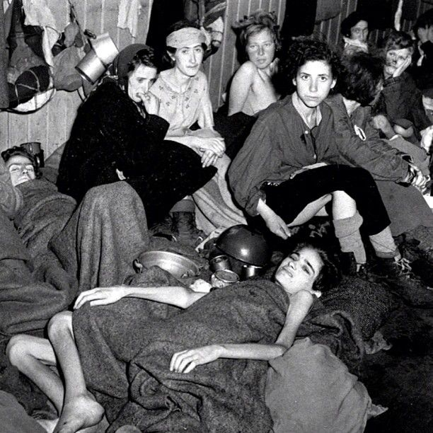1000+ images about The Holocaust 2 (Horrific/Graphic ...
