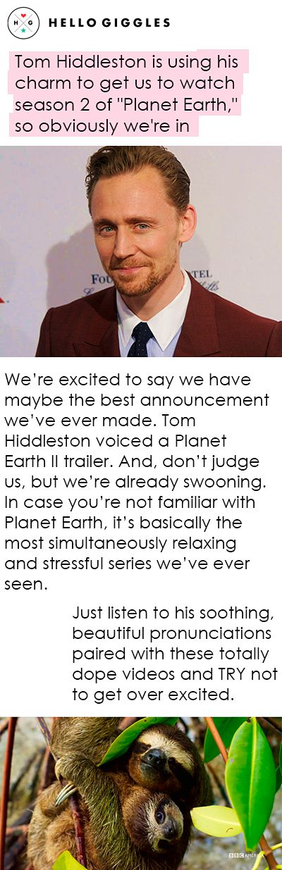 "Tom Hiddleston is using his charm to get us to watch season 2 of ""Planet Earth,"" so obviously we're in. Link: http://hellogiggles.com/planet-earth-ii-tom-hiddleston/?utm_campaign=twittersocialflow&utm_source=Social&utm_medium=Twitter"