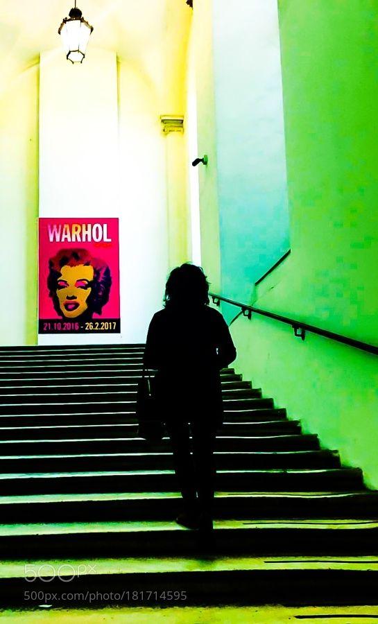 Mostra Andy Warhol - Palazzo Ducale Genova by fabiola62zap. @go4fotos