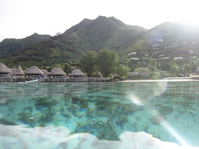 Moorea in French Polynesia Islands....take me there!!!!: Big Guy, Travel Memories, Travel Itinerary, Favorite Places, Polynesia France, Beautiful Places, French Polynesia, Polynesia Islands Take, Been Places