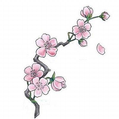 ♥ FANtÁSTICO MUNDO DA PRI ♥: Cherry Blossom Tattoo - Flor de Cerejeira