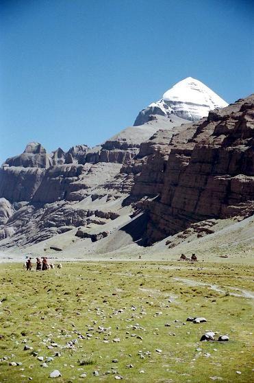チベット カイラス山への巡礼中の荷物をヤクで運ぶ