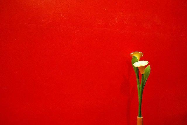 Red Minimalism
