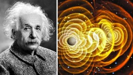 NSF, 아인슈타인 ... :: 네이버 뉴스