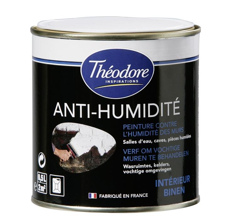 Peinture Anti-Humidité  destinée au traitement et à la protection - traitement humidite mur exterieur