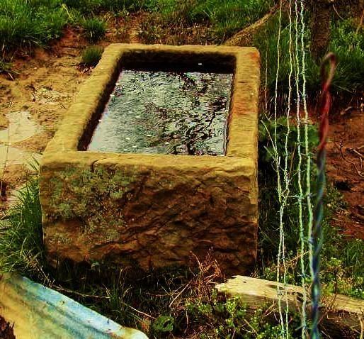 Stone trough  -  hummmm. I see a koi pond.