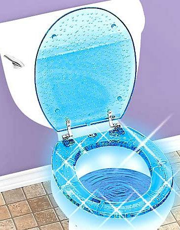 lighted toilet seat
