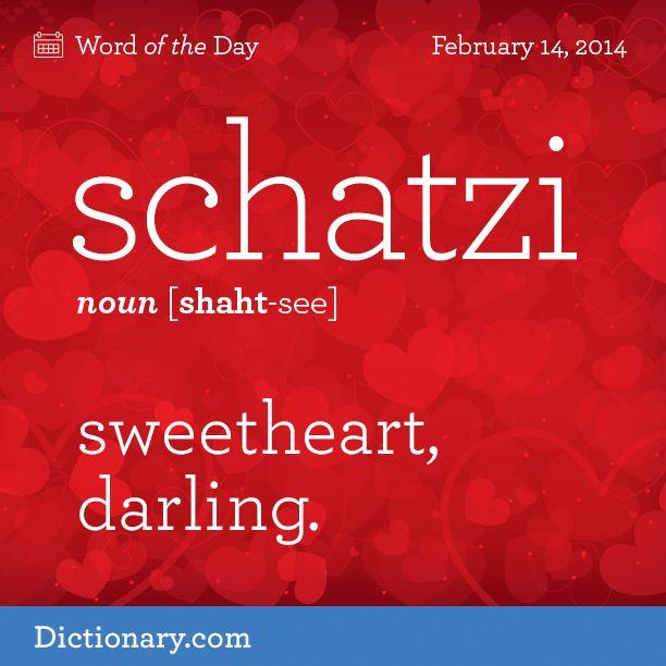 schat·zi  [shaht-see]   noun Slang. sweetheart; darling.