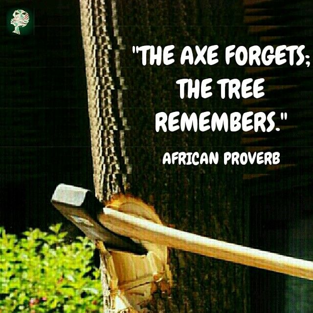 Image result for The axe forgets; the tree remembers.African proverb
