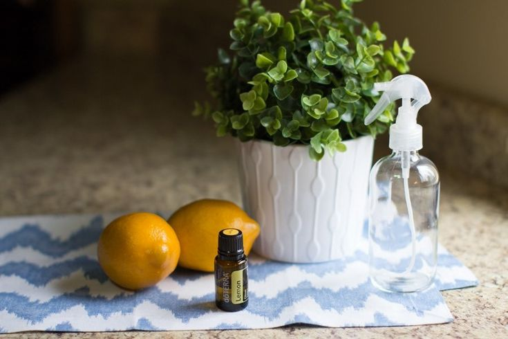 Ever tried using essential oils for #cleaning? 🤔   ⏲️Essential Oil Refrigerator and Microwave Cleaner  🍳Essential Oil Stove Top Cleaner  ♨️Natural Air Freshener  🛁Soft Scrub Bathroom Cleanser  ☯️Yoga Mat Spray  🗑️Garbage Disposal Refreshers  🌲Essential Oil Wood Polish  🏠Essential Oil Glass Cleanser  💦Essential Oil All-Purpose Spray  🍋Lemon Poppy Seed Soap  http://wu.to/xeU1uc